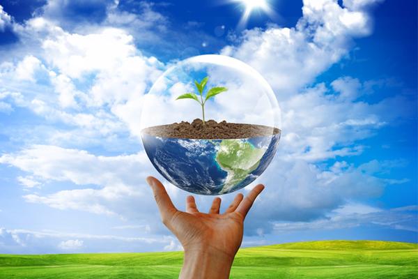 Проект ПДВ — обязательный документ для многих организаций