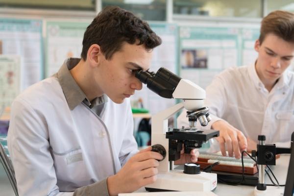 Сложно ли найти работу в науке?